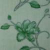 Ирис зеленый